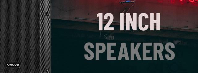 12 Inch VSA Speakers